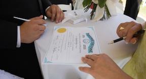 Брачный контракт2