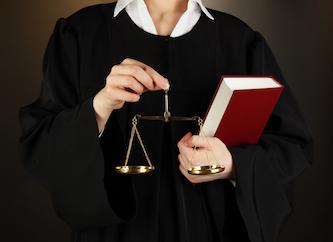 знакомится с материалами дела до судебного заседания